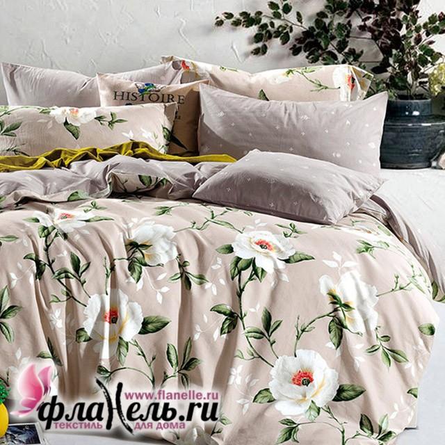 Комплект постельного белья Asabella 1137