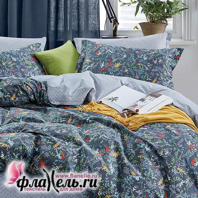 Комплект постельного белья Asabella 1209