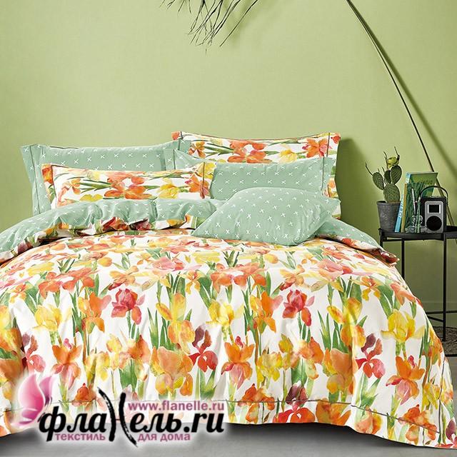 Комплект постельного белья Asabella 1222
