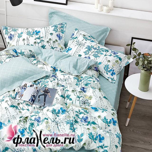 Комплект постельного белья Asabella 1241