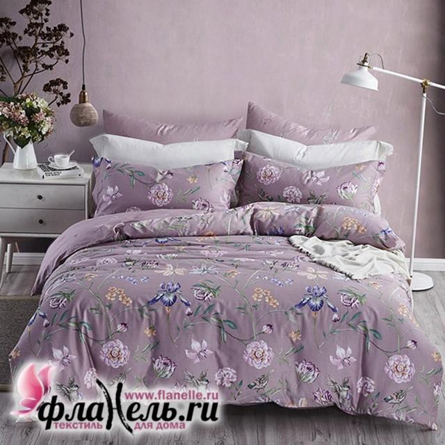 Комплект постельного белья Asabella 477