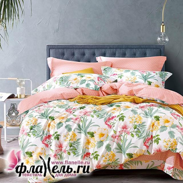 Комплект постельного белья Asabella 485