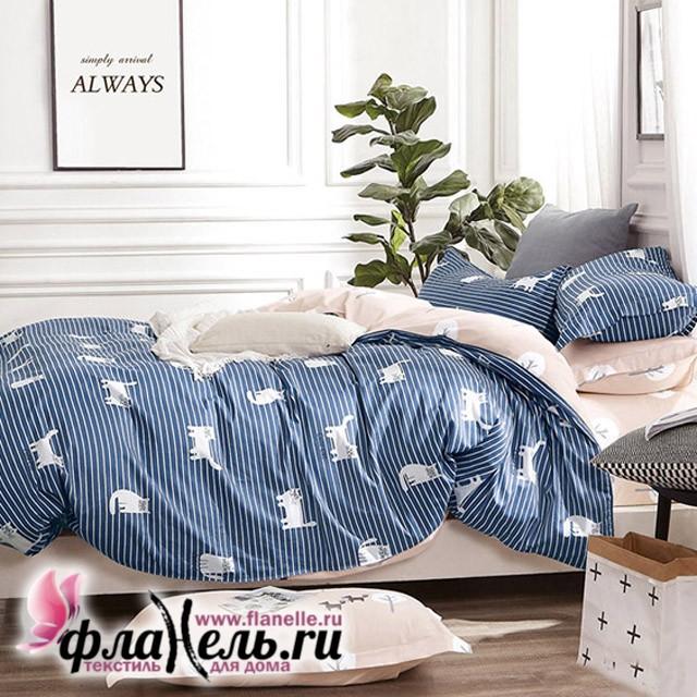 Комплект постельного белья Asabella 530