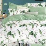 Комплект постельного белья Asabella 532