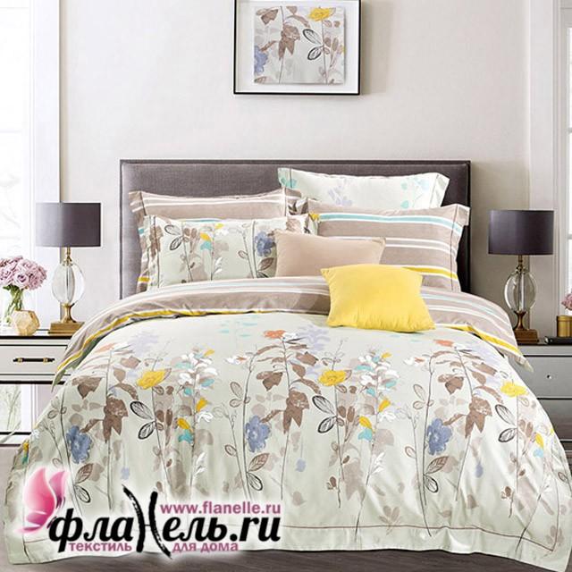 Комплект постельного белья Asabella 537