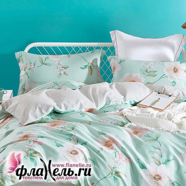 Комплект постельного белья Asabella 556