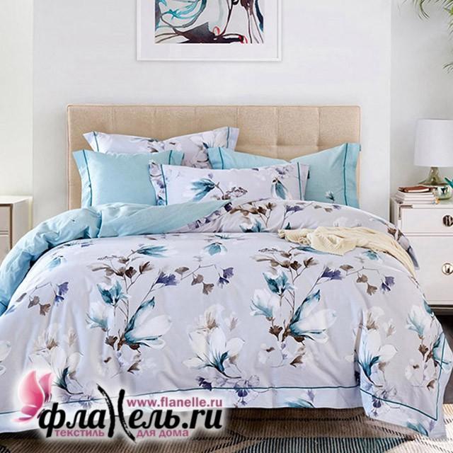 Комплект постельного белья Asabella 567