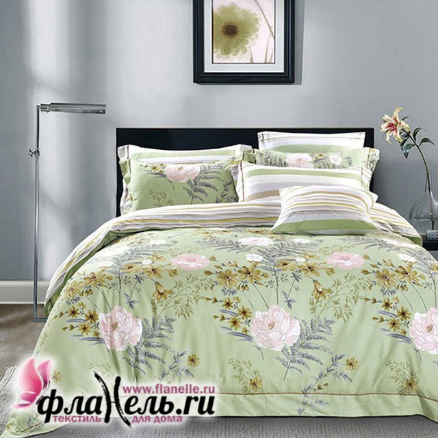 Комплект постельного белья Asabella 569
