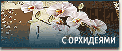 Постельное белье с орхидеями