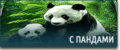Постельное белье с пандами